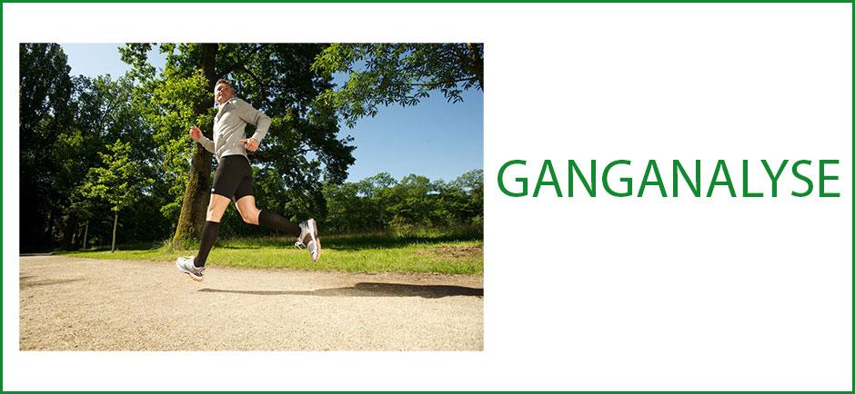 Ganganalyse-Uebersicht