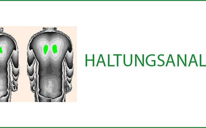 Haltungsanalyse-Uebersicht-Orthotreff