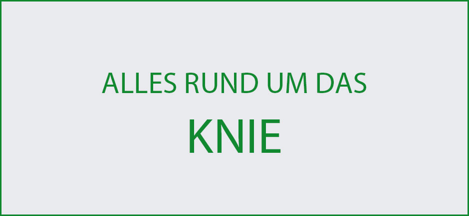 Wissenswertes-Knie-Uebersicht