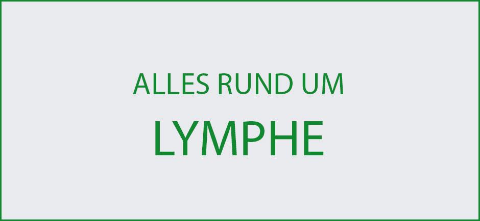 Wissenswertes-Lymphe-Uebersicht